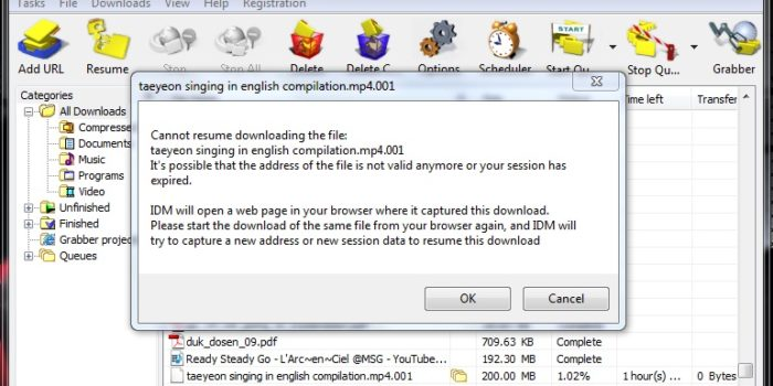 Trik cara mengatasi resume capability download pada idm