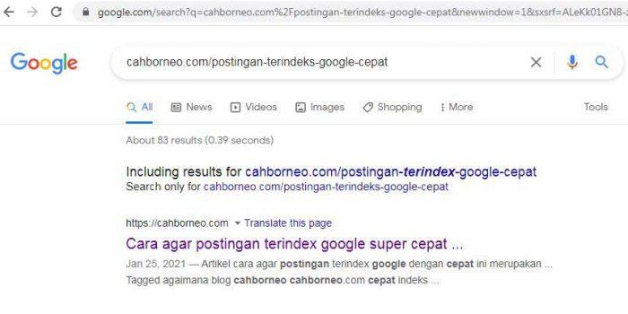 cek postingan terindeks google